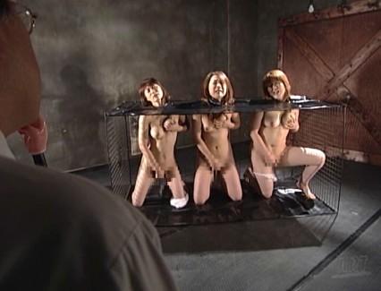【おっぱい】レズビアンコレクターに捧げる!徹底的にSMプレイに興じさせてはイキまくってしまう女性たちのおっぱい画像がエロすぎる!【30枚】