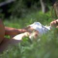 【おっぱい】太陽の下で見る巨乳は格別!!野外で全裸露出させておっぱい丸出しで調教したった青姦おっぱい画像集!w【80枚】